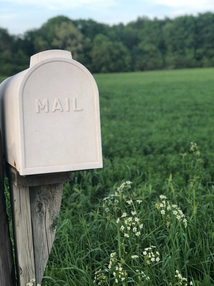 Postkassen kan være den beste gaven din